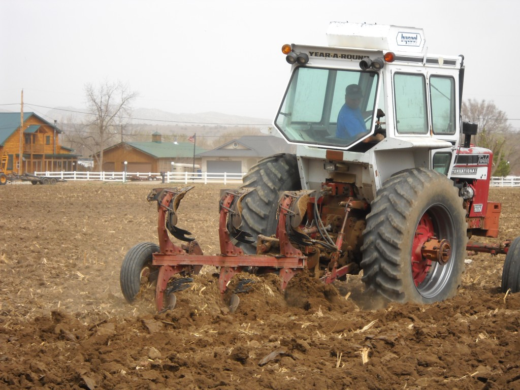 Plowing the soil in the spring.