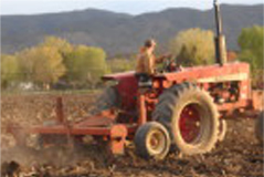 Jimmy & Tim do all the actual field work–spreading fertilizer starts in the fall.