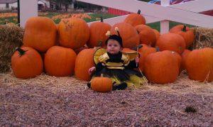 Sat. Sept 23rd Open to the Public @ Diana's Pumpkin Patch & Corn Maze