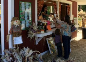 Sat. Sept 23rd Open to the Public @ Diana's Pumpkin Patch & Corn Maze